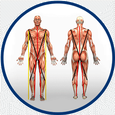 Méthode Busquet des chaînes musculaires (thérapie manuelle de kinésithérapie)