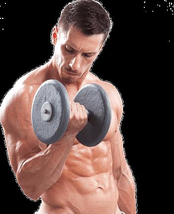 prisse de muscle et force myprotein