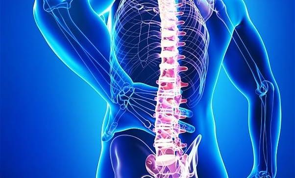 douleur au dos, douleur bas du dos, douleur haut du dos, mal à la nuque, mal de dos kiné, différents types de maux de dos